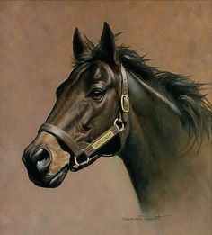 Vindy's grandsire. Seattle Slew - horse painting by Shawn Faust