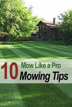 10 Mowing Tips To Mow Like A Pro