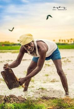 The Farmer of India.