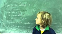 decimales14 Conure, Videos, Living Alone