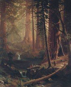 Albert Bierstadt Giant Redwood Trees of California painting for sale, this painting is available as handmade reproduction. Shop for Albert Bierstadt Giant Redwood Trees of California painting and frame at a discount of off.