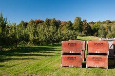 Vergers Rockburn Orchards - Le Garde-Manger du Québec #Verger #Montérégie #Agrotourisme #GardeMangerQC