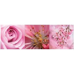 Pink Flowers Wall Decal Kit $39.95