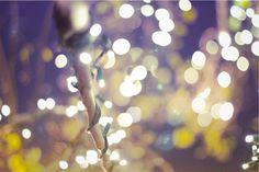 twinkle lights II Starry Lights, Twinkle Lights, Twinkle Twinkle, Summer Nights, Art Photography, Garden, Lights, Jitter Glitter, Fine Art Photography