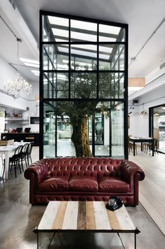 Kook Osteria & Pizzeria located near Rome, Italy.  How could anyone resist an olive tree growing in the atrium, bordeaux leather sofas and glass chandeliers?