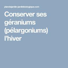 Conserver ses géraniums (pélargoniums) l'hiver Shed Houses, Lawn And Garden, Winter, Bricolage