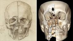 leonardo da vinci + treatise on painting - skull