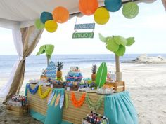Boy's Surf Themed Beach Birthday Party