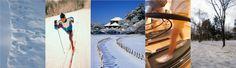 「雪国に負けない」の画像検索結果