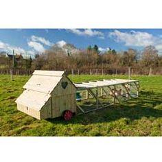 Dorset Ranger Ten Chicken Coop with 12ft Run