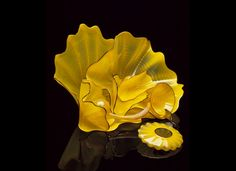 Chihuly. One of the Persians---but with the undulating curves of the Seaform....