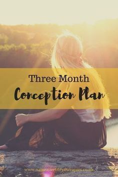 Three month conception plan to help you get pregnant and have a happy and healthy baby. #Fertility #TTC #GetPregnant via @paulaktherapies
