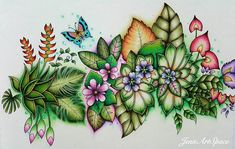 My magical garden. Magical Jungle Johanna Basford, Abstract Pencil Drawings, Joanna Basford, Johanna Basford Secret Garden, Secret Garden Coloring Book, Johanna Basford Coloring Book, Colored Pencil Techniques, Color Pencil Art, Coloring Book Pages