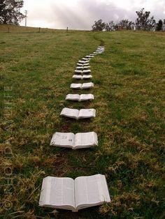 Books will take you somewhere ...