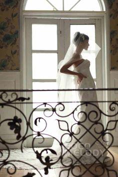 Cocomelody Wedding Dress Black Friday Sale - Wedding Dresses For Budget Brides Wedding Dresses For Sale, Black Wedding Dresses, Wedding Fabric, Tulle Wedding, Budget Bride, Tulle Lace, Bridal Collection, Black Friday, Bridesmaid Dresses