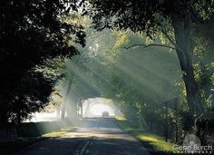 Old Frankfort Pike. A beautiful scenic byway that traipses through Kentucky's Bluegrass region, skirting thoroughbred horse farms and the iconic Keeneland race course.