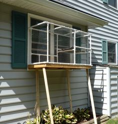 Screened Cat Porch                                                       …