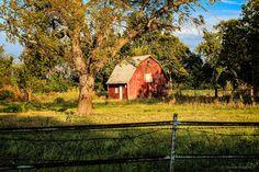 https://flic.kr/p/YkzBts | little red barn