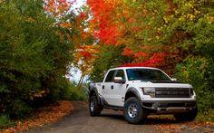 """Ford F-150 Roush"" Re-Pinned by Bozard Ford Lincoln, Jacksonville area Ford truck dealership http://www.fordjacksonville.net/"