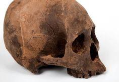 Life Size Chocolate Skulls: http://skullappreciationsociety.com/life-size-chocolate-skulls/ via @Skull_Society
