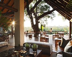 Representing the heart of Londolozi, Varty Camp's ongoing love affair with the earth for 90 years showcases the quinteseential fundamentals of Londolozi. Zulu, Parc National Kruger, Rhino Africa, Safari Holidays, African Interior, Game Lodge, Kenya Travel, Deck, Lodge Style