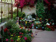 Nice Container Garden Patio!!