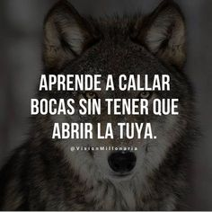 APRENDE A CALLAR BOCAS SIN TENER QUE ABRIR LA TUYA #vision #millonarios #autoestima #liderazgo Motivational Phrases, Inspirational Quotes, Cute Senior Pictures, Wolf Quotes, Boxing Quotes, Millionaire Quotes, Spiritual Messages, Empowerment Quotes, Strong Quotes