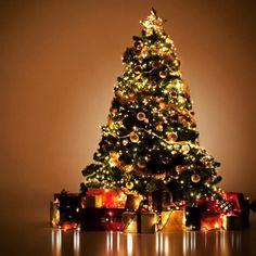 Muy feliz navidad para todos nuestros amigos desde @campanopolis #feliznavidad