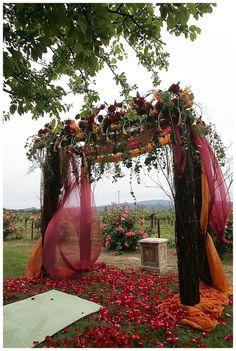 Celebrity Wedding Planner   Event Planner   Designer   Coordinator   SF   LA   Napa   Sonoma   Sasha Souza Events