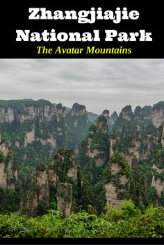 Heard of the Avatar Mountains in China? They are real in Zhangjiajie National…