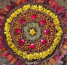 Find images and videos about mandala on We Heart It - the app to get lost in what you love. Flower Mandala, Flower Art, Meditation Rooms, New Earth, Cross Stitch Animals, Land Art, Sacred Geometry, Zentangle, Make It Yourself