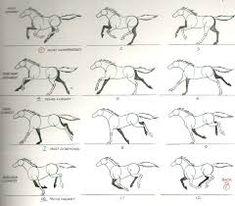 Resultado de imagen para side running horses