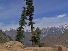himalayan mountains pictures Himalaya Mountain Wallpapers