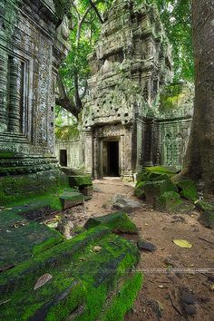 Ta Prohm temple in Cambodia | My Facebook page My 500px page… | Flickr