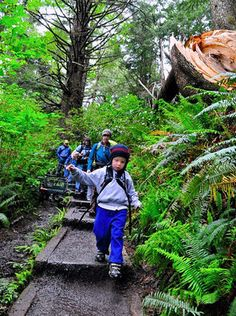 Tips for first backpacking trip with kids