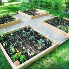 Raised bed with gravel paths