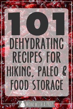 101+ Dehydrating Recipes for Food Storage, Hiking and Paleo Diets - build up your food storage for emergency preparedness ...