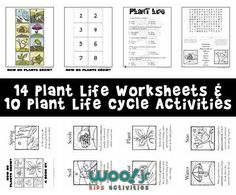 Learn about plant life with 14 printables, including a mini book, coloring pages, matching game and a sequencing activity. Includes lesson plan ideas and two worksheets for your classroom or homeschool curriculum.