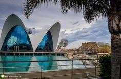 Poze de la Oceanograful din Valencia Valencia, City Break, Opera House, Building, Travel, Viajes, Buildings, Destinations, Traveling