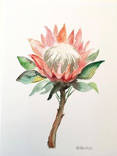Original watercolor PRINT on card stock Watercolor Leaves, Watercolor Print, Protea Art, King Protea, Painting Patterns, Pictures To Paint, Flower Tattoos, Art Inspo, Artsy