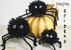How to Make PomPom Spiders for Halloween tutorial from A Pinch of Joy! Cute, quick and easy -- and did I say cute!