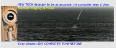 Infrared cameras with image recognition software new technology over migrating gray whales.summer feeding grounds in ...