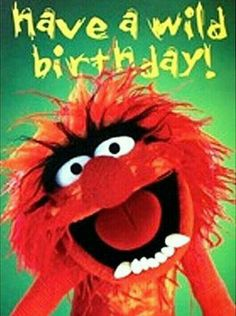 Have a WILD birthday!!!