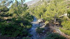 Only Sougia, why? Because it has everything!   Place: Part of a walk Agia Irini gorge to Sougia  🌼🌼🌼🌼🌼🌼🌼🌼🌼🌼  Website: www.visitsougia.com   😜😜😜😜😜😜😜😜😜😜  #greek #crete #walking #trekking #creteisland #chania #greece #crète #cretelife #greekpride #hraklion #agiairinigorge #lifeofadventure #greece #greekislands #greekgirl #southeurope #neverstopexploring #greekfood #greeceislands #greeklife #oliveoil #creteisland #sougia #elafonisi #palaiochora #chorasfakion #ilovegreece