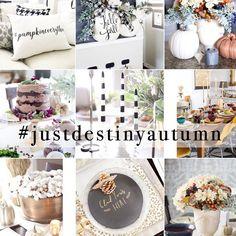 Simply on Sunday--beautiful Fall inspiration from Just Destiny Magazine | 11 Magnolia Lane