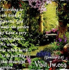 Book Of Genesis, Genesis 2, Life In Paradise, Whole Earth, Garden Of Eden, God, Places, Books, Beautiful