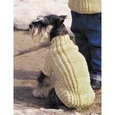 Free Intermediate Pet's Sweater Knit Pattern