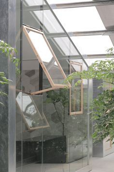 Work-Studio in a Plant-House,© Liky Photos