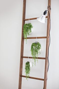 home decor plants I already use my ladder for blanket storage but the plant idea is a pretty tempting switch (A Beautiful Mess) Plant Ladder, Ladder Decor, Diy Ladder, Ladder Display, Hanging Plants, Indoor Plants, Blanket Storage, Decoration Plante, Farmhouse Side Table