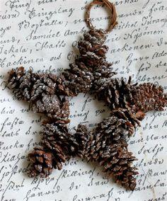 Pine cone star